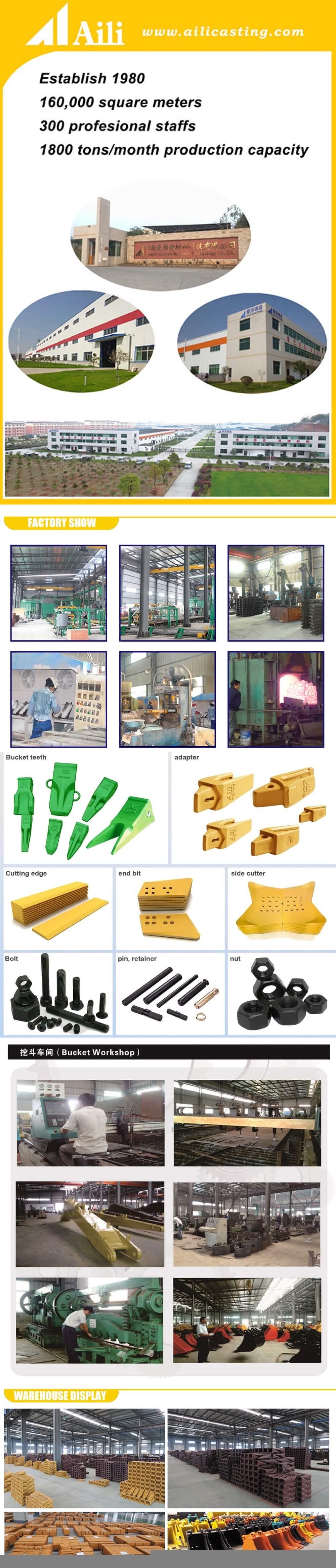 Aili-Company-profile
